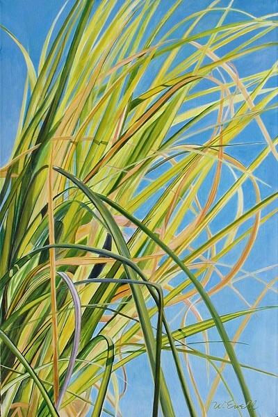 sunlitgrass.jpg